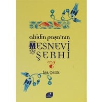 Abidin Paşa'nın Mesnevi Şerhi