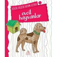 Evcil Hayvanlar - Küçük Kaşifin Boyama Kitabı 1 - Nilüfer Taktak