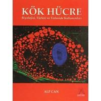 Kök Hücre - Alp Can