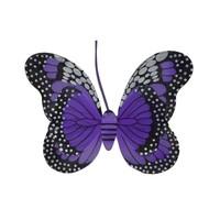 Kızılkaya 1310037 Büyük Kelebek Kanat