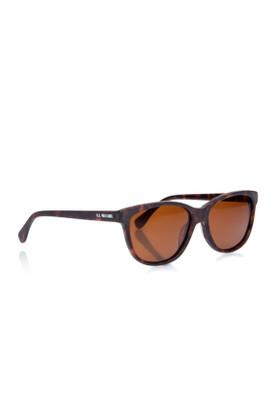 U.s. Polo Assn. Us.p 785 Tortoise Unisex Güneş Gözlüğü