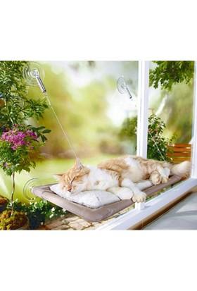 Lion Kediler iççin Asmalı Kedi Yatağı 55*34cm