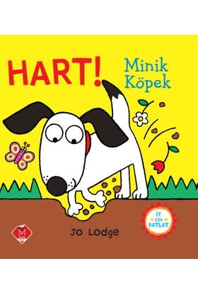 Hart! Minik Köpek - Jo Lodge