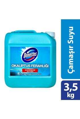 Domestos Çamaşır Suyu Okalıptus Ferahlığı 3.5 Kg