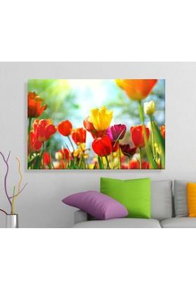 Arse Gelincikler Dekoratif Kanvas Tablo 50x70 cm