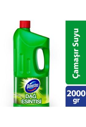 Domestos Çamaşır Suyu Dağ Esıntisi 2000 gr