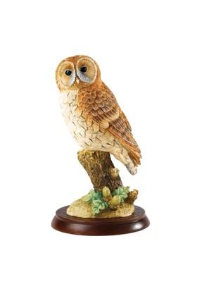 Border Fine Arts Tawny Owl Biblo