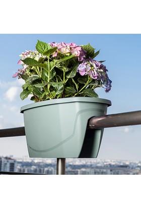 Mini Garden Zümrüt Balkon Saksısı Büyük Su Yeşili