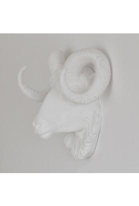 İki Lob Dekoratif Koç Kafası Büstü Mat Renkler