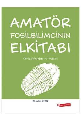 Amatör Fosilbilimcinin Elkitabı (Deniz Kabukları Ve Fosiller)
