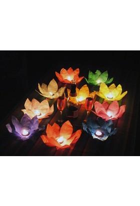Toptancı Kapında Nilüfer (Çiçek) Su Feneri (25 Adet)