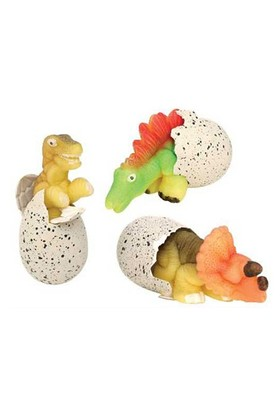 Toptancı Kapında Suda Büyüyen Sihirli Dinazor Yumurtası