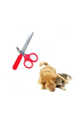 Toptancı Kapında Evcil Hayvan Tırnak Makası Ve Törpü Seti