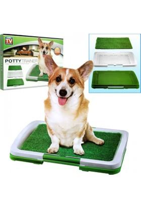 Toptancı Kapında Yavru Köpek Lazımlığı Puppy Potty Pad