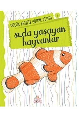 Suda Yaşayan Hayvanlar - Küçük Kaşifin Boyama Kitabı Serisi - Nilüfer Taktak