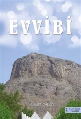 Evvibi