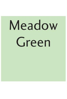 Letraset Promarker G339 Meadow Green