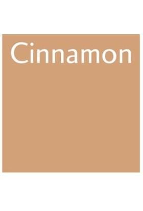 Letraset Promarker O427 Cınnamon