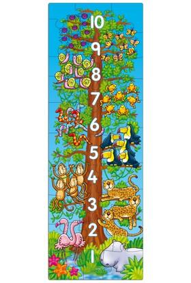 Orchard 1-2-3 Sayılar (3-6 Yaş / Puzzle)