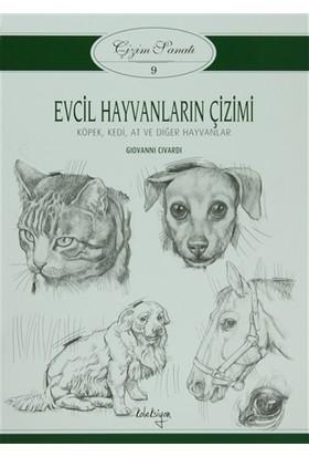 Çizim Sanatı 9 - Evcil Hayvanların Çizimi