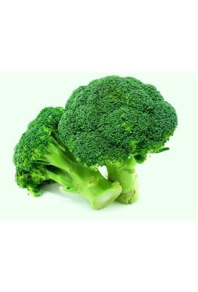 Tohhum Brokoli 20 Tohum [Tohhum Ev Bahçe]