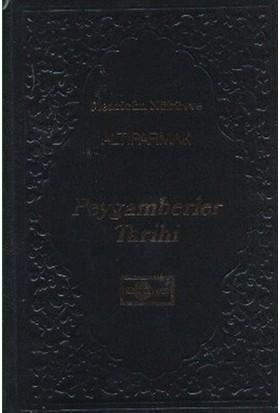 Peygamberler Tarihi (Altıparmak) - Muinüd'din Muhammed Emîn Hirevî