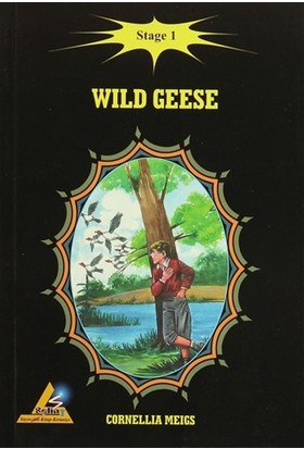 Wild Geese - Stage 1 - Cornellia Meigs