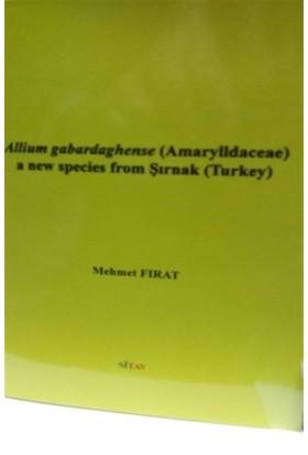 Allium gabardaghense (Amarylldaceae) a New Species From Şırnak (Turkey)