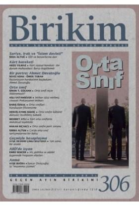 Birikim Aylık Sosyalist Kültür Dergisi Sayı: 306