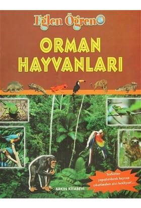 Orman Hayvanları
