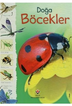 Doğa: Böcekler - Louie Stowell
