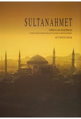 Sultanahmet Tarihi Alanı Araştırması