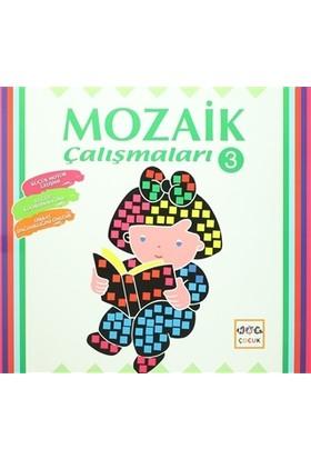 Mozaik Çalışmaları - 3