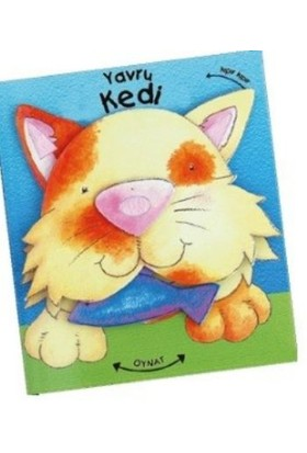 Yavru Kedi