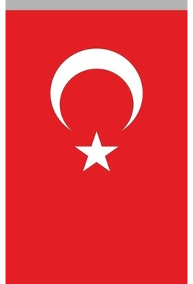 Koşan Türk Bayrağı 200x300 Cm Polyester Kumaş