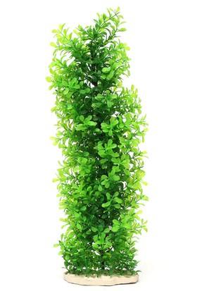 Huihuang 1378 Plastik Bitki