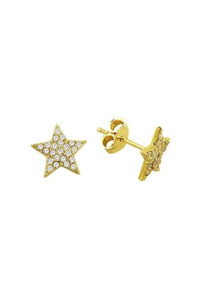 Bilezikhane Küpe Yıldız 1,43 Gram 14 Ayar Altın