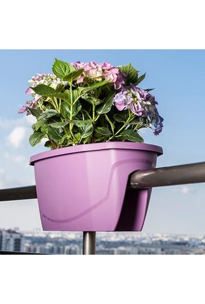 Mini Garden Zümrüt Balkon Saksısı Büyük Beyaz
