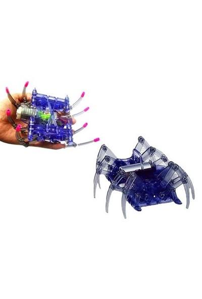 BuldumBuldum Dıy Spider Robot - Solar Örümcek Robot
