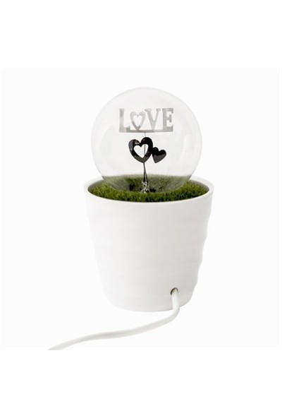 BuldumBuldum Potted Plant Night Light - Romantik Saksı Gece Lambası