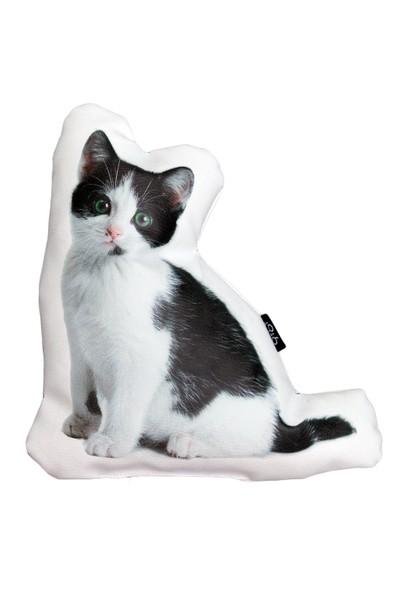 Gibi Design Percy Yavru Kedi Yastık