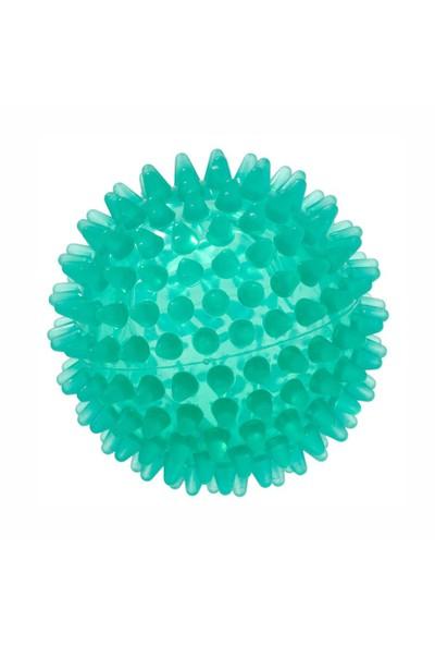 Gymnıc Reflex Ball-8 cm