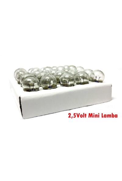 Electroon 2,5Volt Mini Lamba - 50 Adet