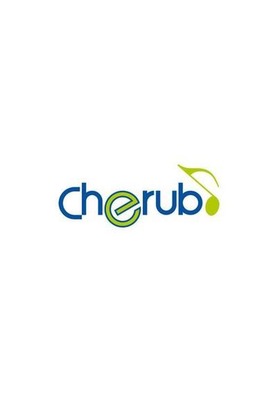 Cherub Gitar Aksesuar Dönüştürücü iPhone-iPad GB2I