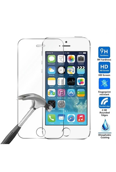 Case 4U Apple iPhone Se Cam Ekran Koruyucu