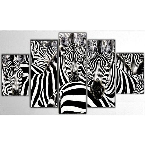 Tictac Design 5 Parça Kanvas Tablo - Zebra