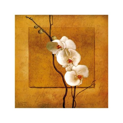 ARTİKEL Morning Dew 4 Parça Kanvas Tablo 70x70 cm KS-160