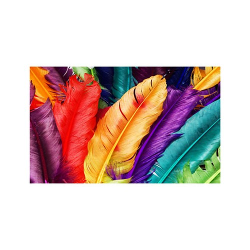 ARTİKEL Colorful Feathers 5 Parça Kanvas Tablo 135x85 cm KS-301