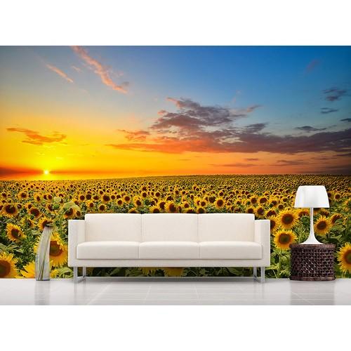 Artmodel Günbatımı Ayçiçekler Poster Duvar Kağıdı Pdm-71