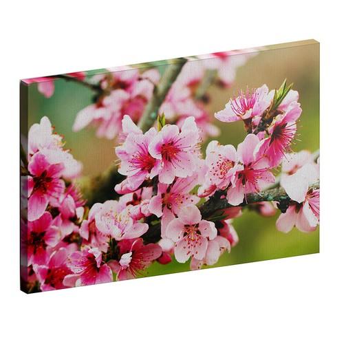 Albitablo Çiçekler 70 x 50 cm Yatay Kanvas Tablo